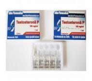 Testosterona P